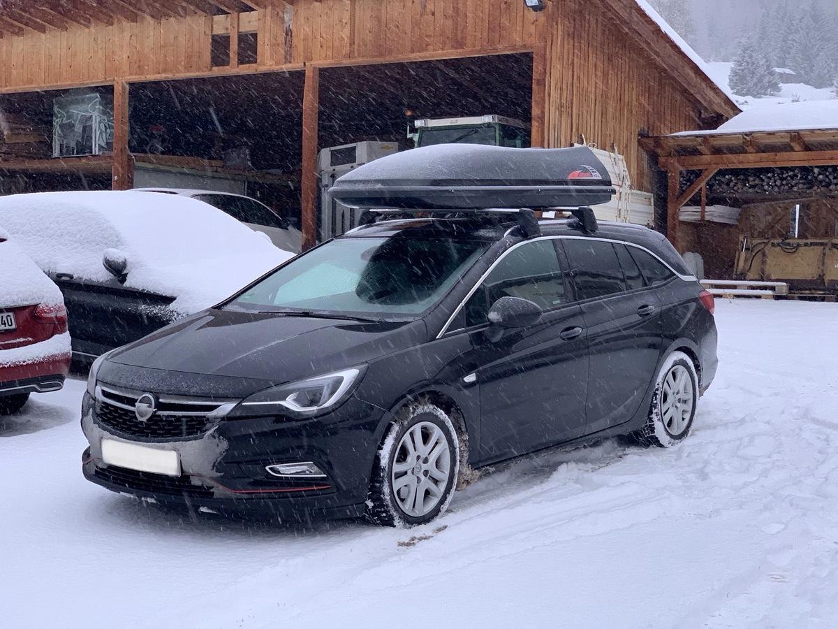 Stonyx im Schnee
