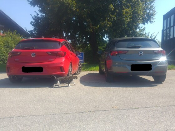 Astra K vs Facelift